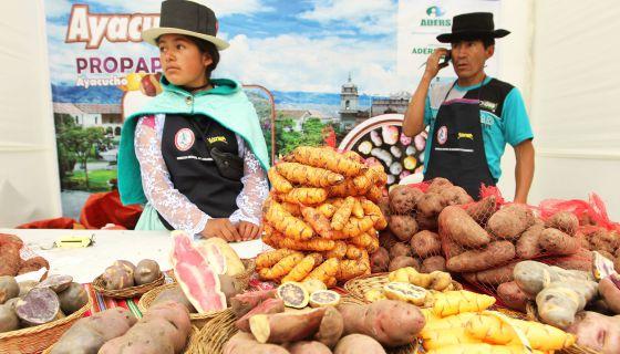 Agricultores andinos en el Festival de la papa nativa, en Lima. / EFE