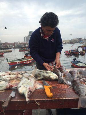 Una pescadería en el puerto de la ciudad chilena de Antofagasta.