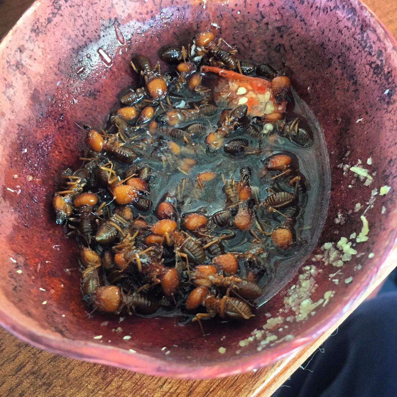 Hormigas con ají negro