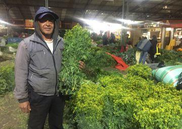 Mercado hierbas Bogotá