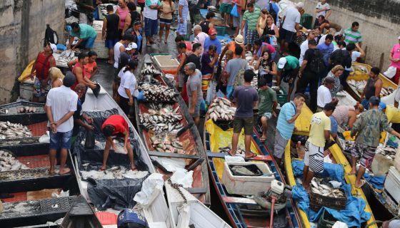 Los mercaderes venden pescado en el mercado de Manaos. / Agencia Estado